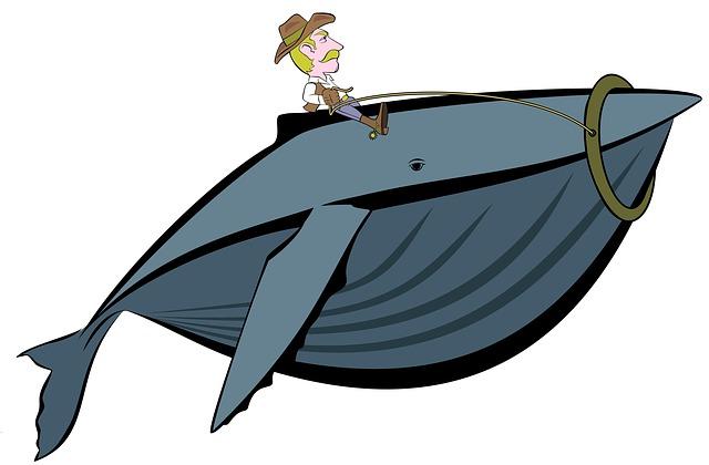 whale-990290_640